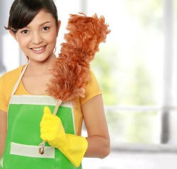 Professional Domestic Cleaning Companies in Croydon